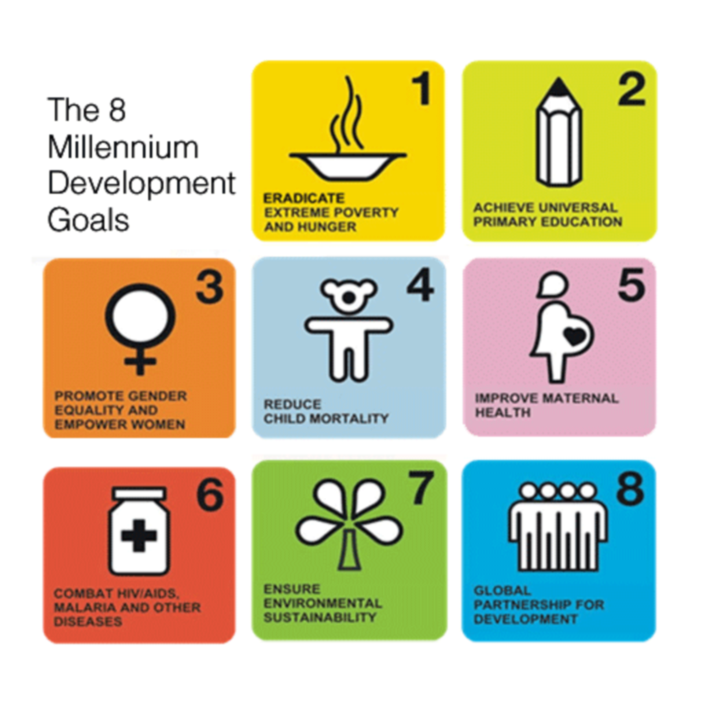 millenium development goals essay competition